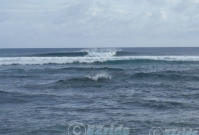 21310220918-Surf-Lessons-Hawaii-EZride-Florida