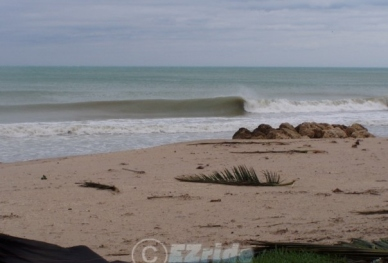 2Surf-Lessons-Wilma-1