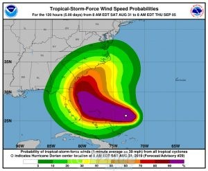 Hurricane Dorian Surf 2019
