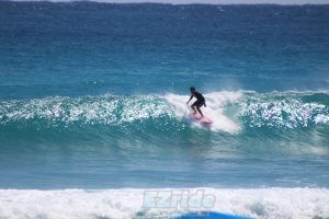 Surf In Florida